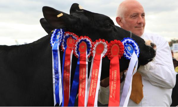 Livestock Rules & Regulations